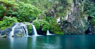 Voyager à la Réunion